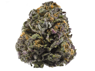 photo of grand daddy purple